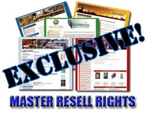 Product picture 10 EXCLUSIVE Niche Websites All Done For You FOR $9.95